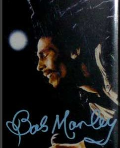 Bob Marley: Fridge Magnet - On Stage