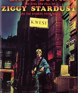 David Bowie: Fridge Magnet - Ziggy Stardust