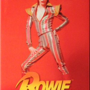 David Bowie: Fridge Magnet - Red Pose