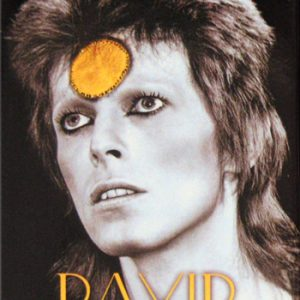 David Bowie: Fridge Magnet - BW Yellow