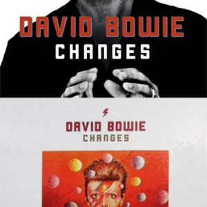 David Bowie: Book - Changes